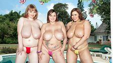 Boobs 'n' Bikinis